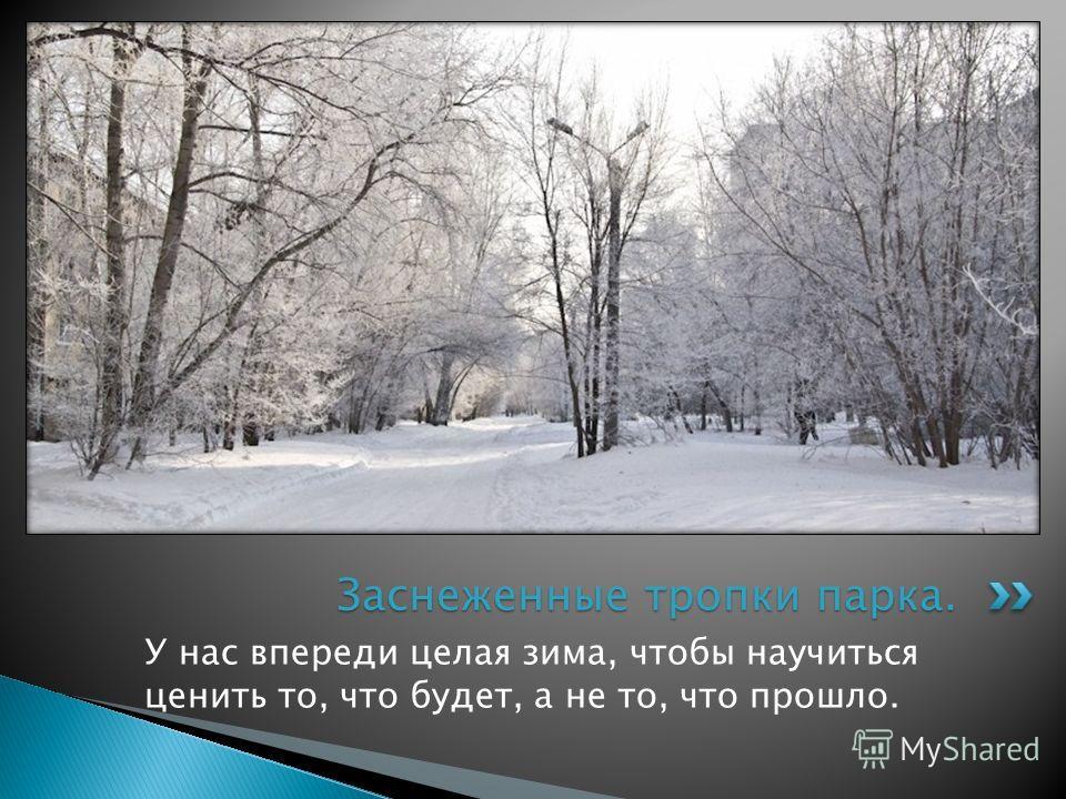 У нас впереди целая зима, чтобы научиться ценить то, что будет, а не то, что прошло. Заснеженные тропки парка.