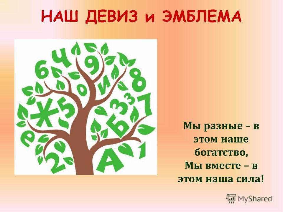 НАШ ДЕВИЗ и ЭМБЛЕМА Мы разные – в этом наше богатство, Мы вместе – в этом наша сила!
