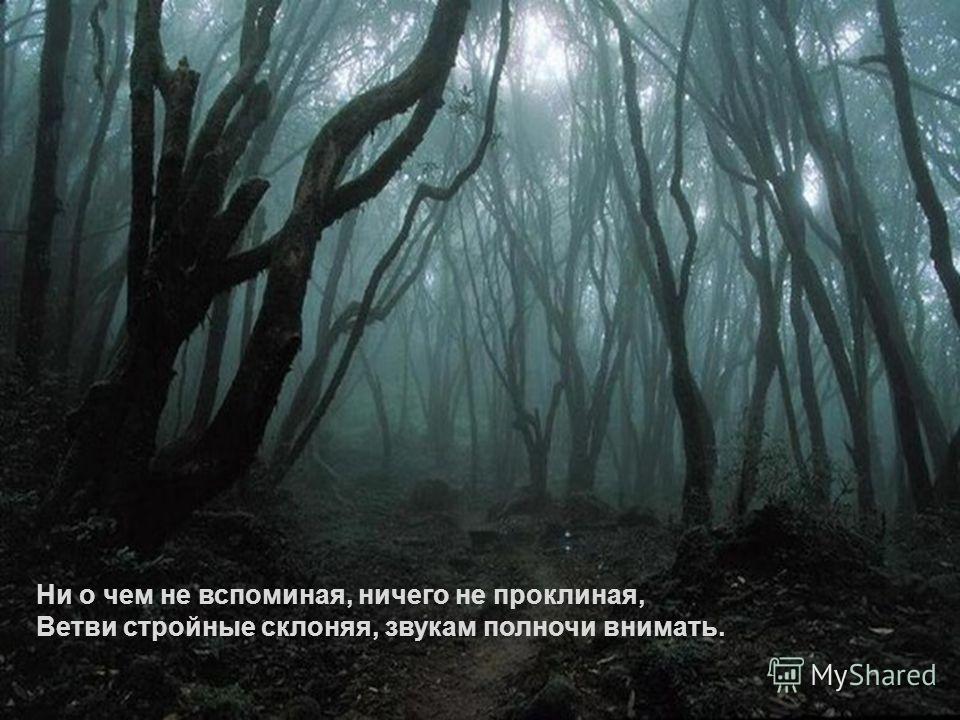 Ни о чем не вспоминая, ничего не проклиная, Ветви стройные склоняя, звукам полночи внимать.