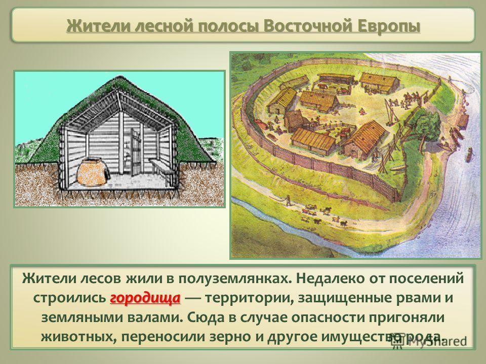 Жители лесной полосы Восточной Европы городища Жители лесов жили в полуземлянках. Недалеко от поселений строились городища территории, защищенные рвами и земляными валами. Сюда в случае опасности пригоняли животных, переносили зерно и другое имуществ