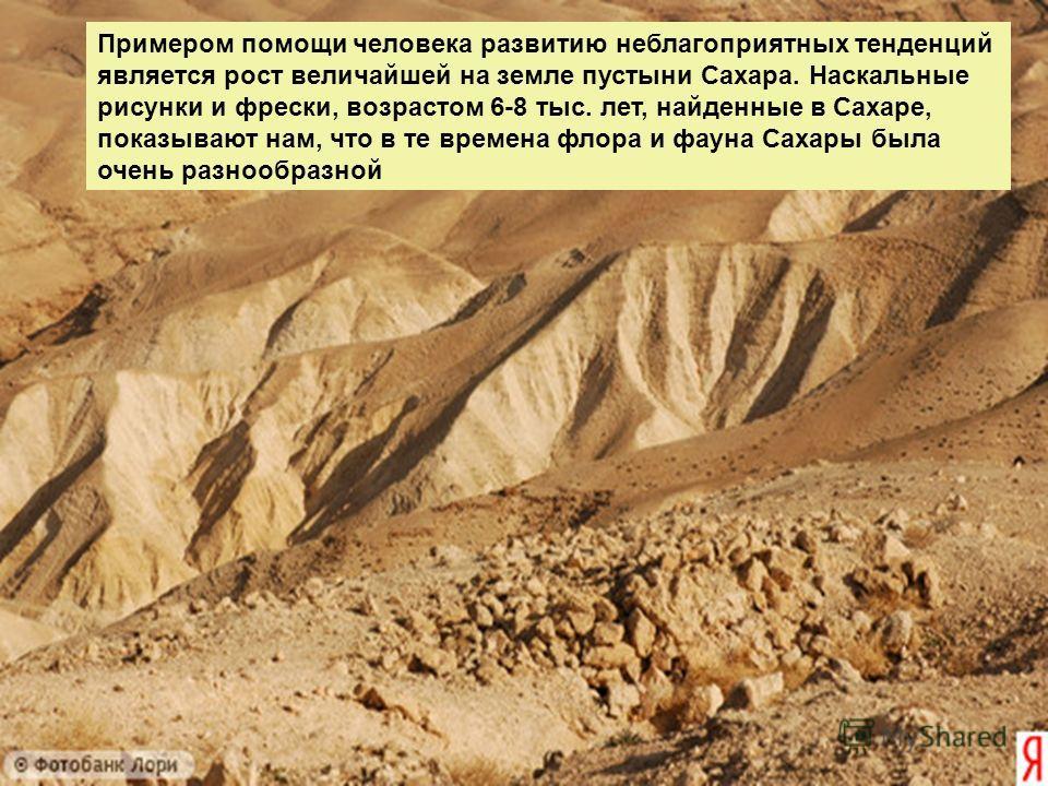 Примером помощи человека развитию неблагоприятных тенденций является рост величайшей на земле пустыни Сахара. Наскальные рисунки и фрески, возрастом 6-8 тыс. лет, найденные в Сахаре, показывают нам, что в те времена флора и фауна Сахары была очень ра