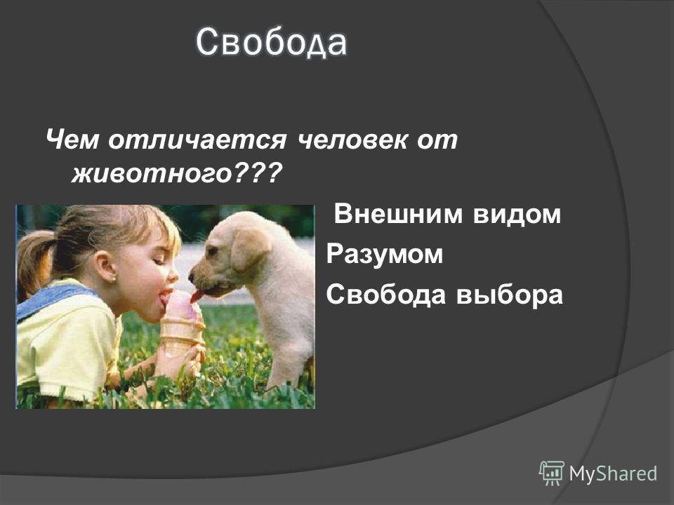 Чем отличается человек от животного??? Внешним видом Разумом Свобода выбора