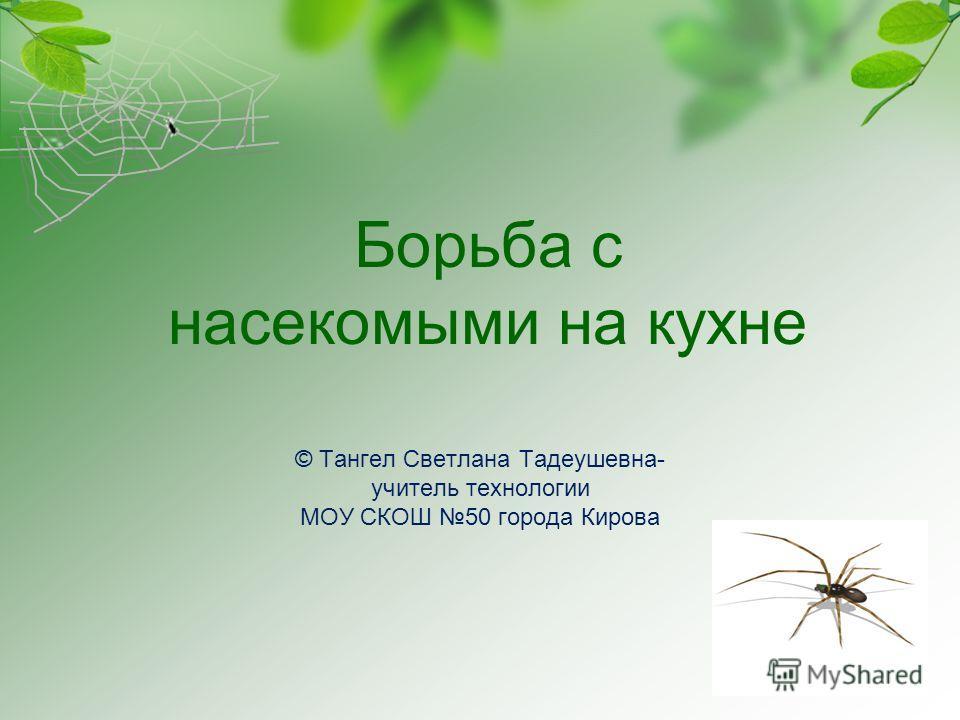 © Тангел Светлана Тадеушевна- учитель технологии МОУ СКОШ 50 города Кирова Борьба с насекомыми на кухне