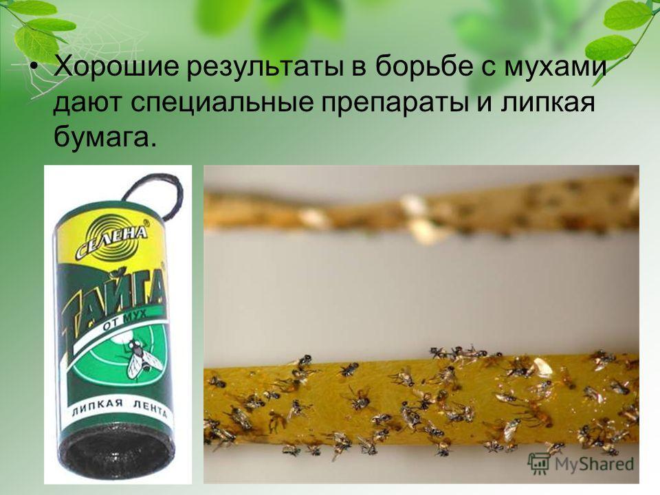 Хорошие результаты в борьбе с мухами дают специальные препараты и липкая бумага.