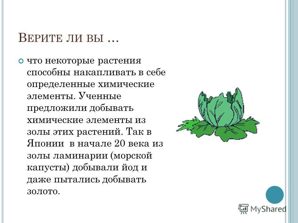 что некоторые растения способны накапливать в себе определенные химические элементы. Ученные предложили добывать химические элементы из золы этих растений. Так в Японии в начале 20 века из золы ламинарии (морской капусты) добывали йод и даже пытались