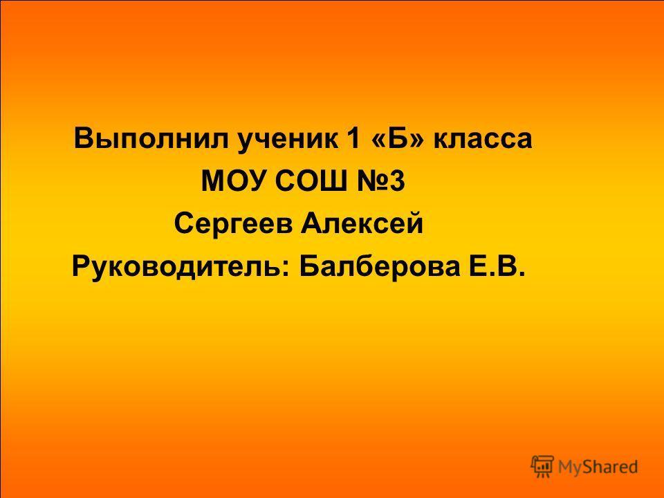 Выполнил ученик 1 «Б» класса МОУ СОШ 3 Сергеев Алексей Руководитель: Балберова Е.В.