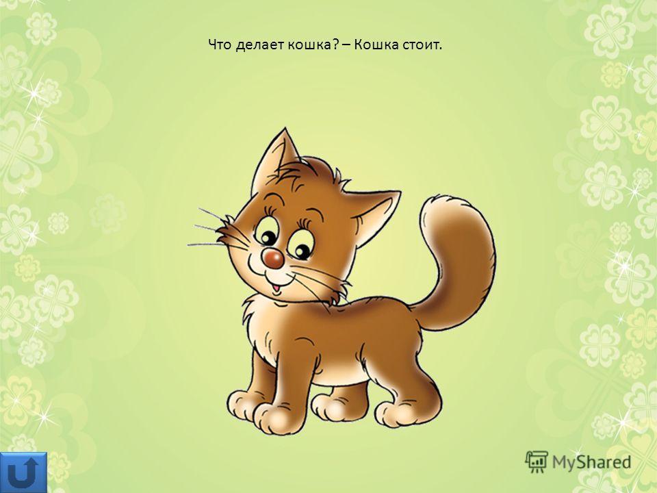 Что делает кошка? – Кошка стоит.