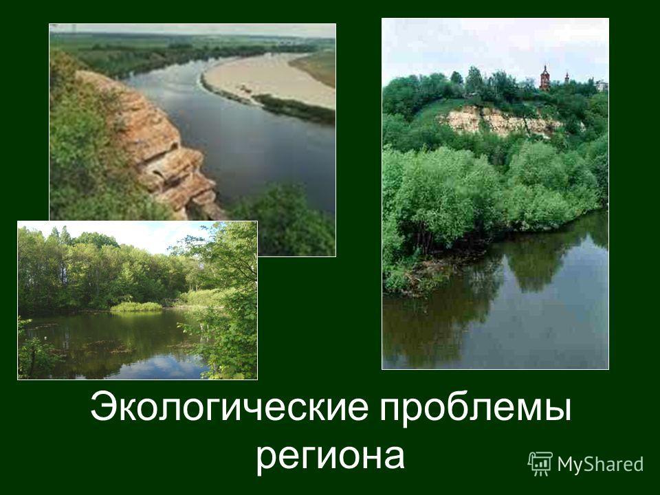 Экологические проблемы региона
