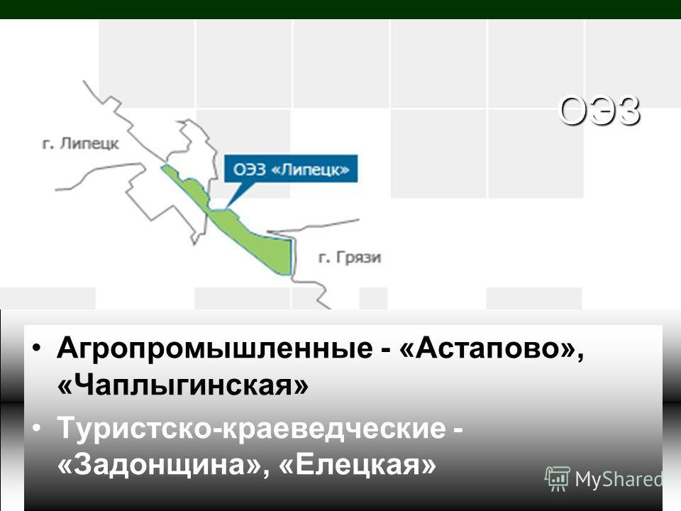 ОЭЗ Агропромышленные - «Астапово», «Чаплыгинская» Туристско-краеведческие - «Задонщина», «Елецкая»
