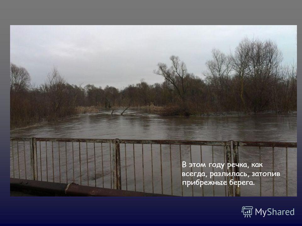 В этом году речка, как всегда, разлилась, затопив прибрежные берега.