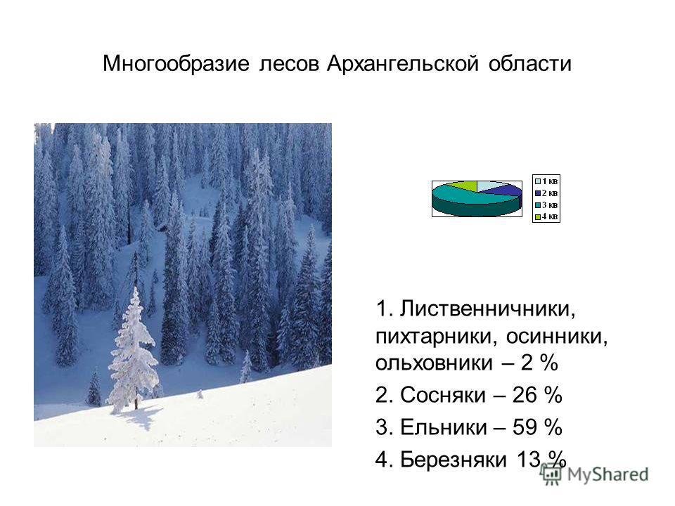 Многообразие лесов Архангельской области 1. Лиственничники, пихтарники, осинники, ольховники – 2 % 2. Сосняки – 26 % 3. Ельники – 59 % 4. Березняки 13 %