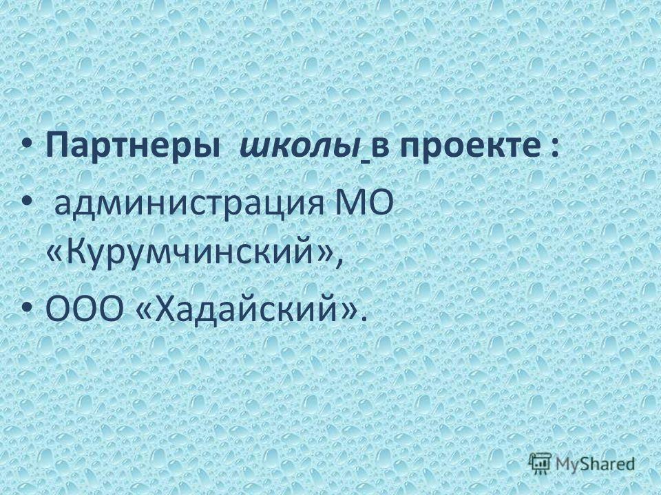 Партнеры школы в проекте : администрация МО «Курумчинский», ООО «Хадайский».