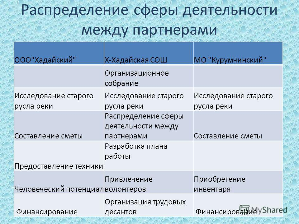 Распределение сферы деятельности между партнерами ООО