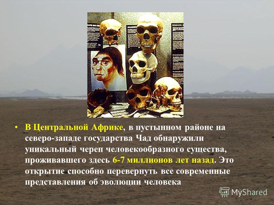 В Центральной Африке, в пустынном районе на северо-западе государства Чад обнаружили уникальный череп человекообразного существа, проживавшего здесь 6-7 миллионов лет назад. Это открытие способно перевернуть все современные представления об эволюции