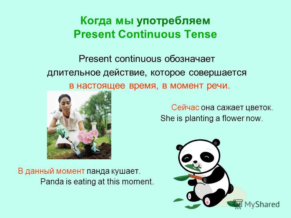 Когда мы употребляем Present Continuous Tense Present continuous обозначает длительное действие, которое совершается в настоящее время, в момент речи. Сейчас она сажает цветок. She is planting a flower now. В данный момент панда кушает. Panda is eati