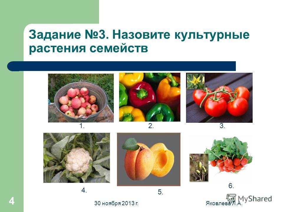 30 ноября 2013 г.Яковлева Л.А. 3 Задание 2. Определите растения 1. 2. 3. 4.