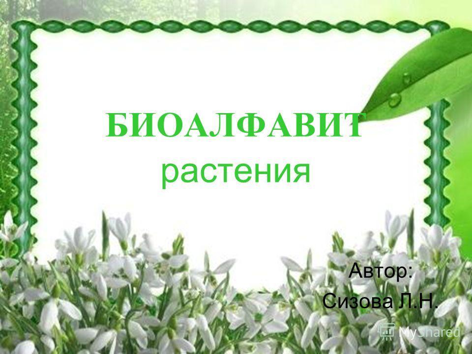 БИОАЛФАВИТ растения Автор: Сизова Л.Н.