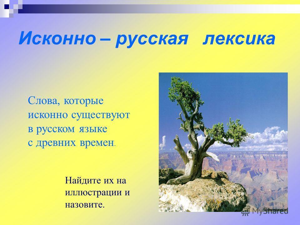 Исконно – русская лексика Слова, которые исконно существуют в русском языке с древних времен. Найдите их на иллюстрации и назовите.