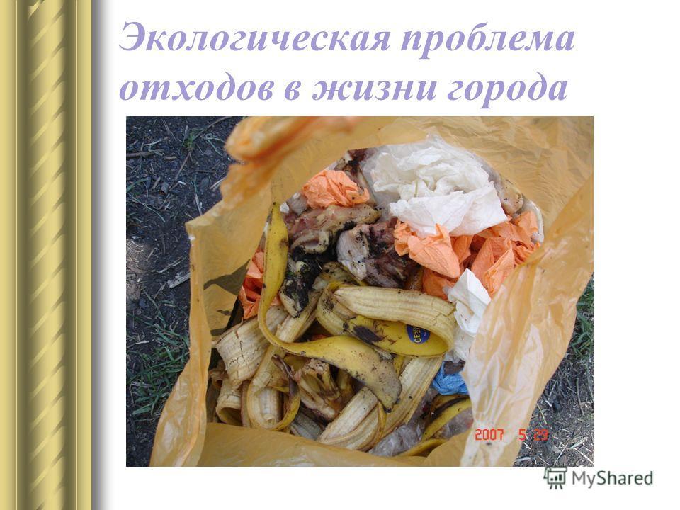 Экологическая проблема отходов в жизни города