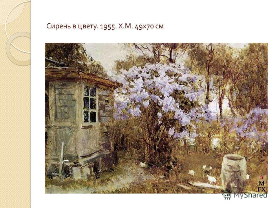 Сирень в цвету. 1955. Х. М. 49 х 70 см