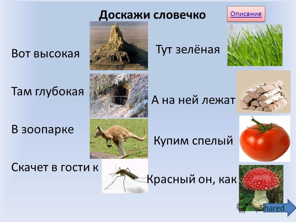 «Бабочка» Описание игр РО РУ РА ОР УР РЭ РЫ АР
