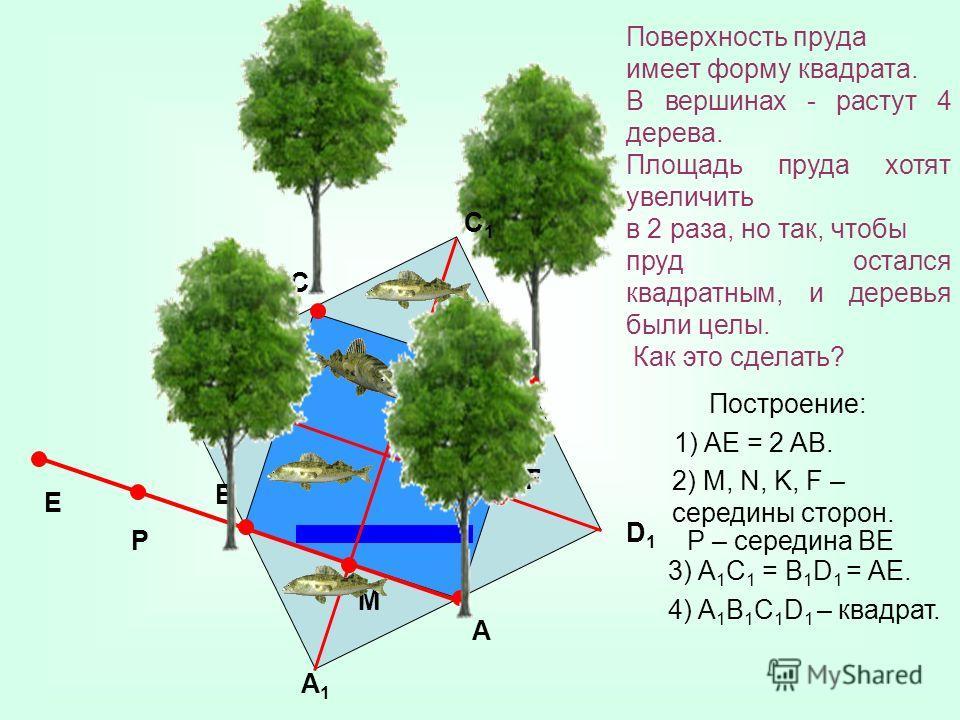 Построение: 1) AE = 2 AB. B A P C D E K F N M 2) M, N, K, F – середины сторон. P – середина ВЕ A1A1 B1B1 C1C1 D1D1 3) A 1 C 1 = B 1 D 1 = AE. 4) A 1 B 1 C 1 D 1 – квадрат. Поверхность пруда имеет форму квадрата. В вершинах - растут 4 дерева. Площадь