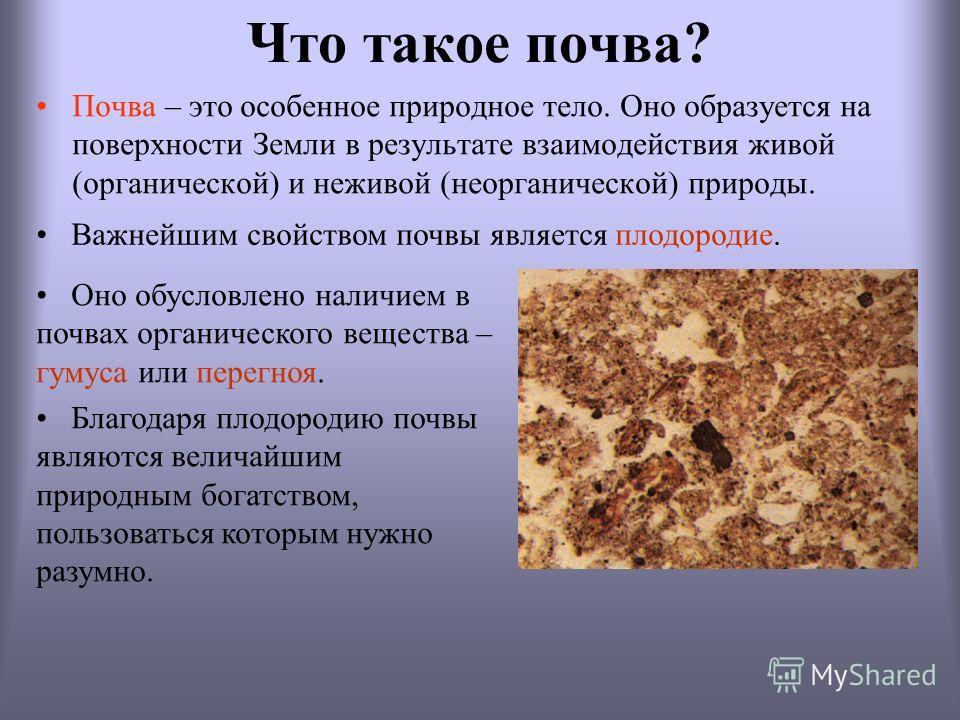 Что такое почва? Почва – это особенное природное тело. Оно образуется на поверхности Земли в результате взаимодействия живой (органической) и неживой (неорганической) природы. Оно обусловлено наличием в почвах органического вещества – гумуса или пере