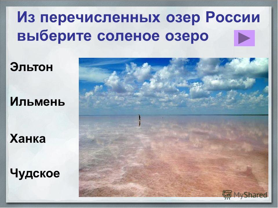 Ильмень Из перечисленных озер России выберите соленое озеро Эльтон Чудское Ханка