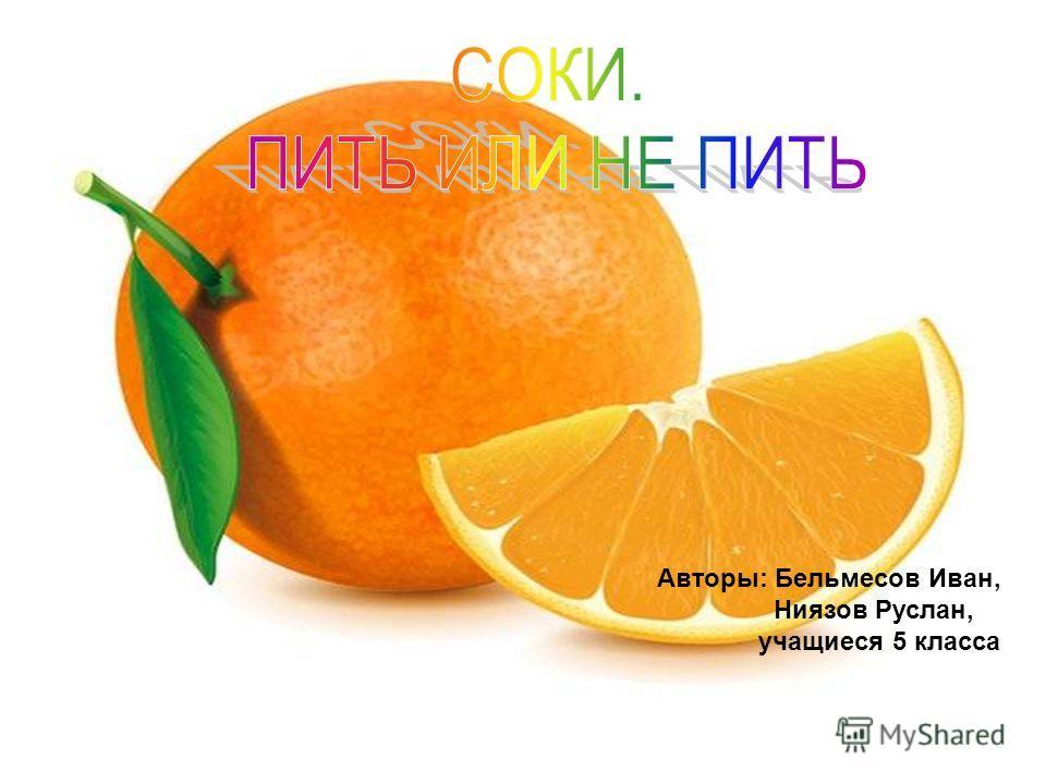 Авторы: Бельмесов Иван, Ниязов Руслан, учащиеся 5 класса