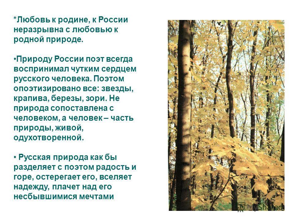 *Любовь к родине, к России неразрывна с любовью к родной природе. Природу России поэт всегда воспринимал чутким сердцем русского человека. Поэтом опоэтизировано все: звезды, крапива, березы, зори. Не природа сопоставлена с человеком, а человек – част