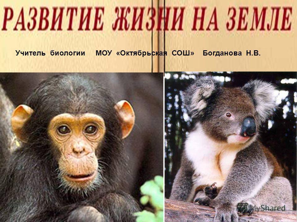 Учитель биологии МОУ «Октябрьская СОШ» Богданова Н.В.