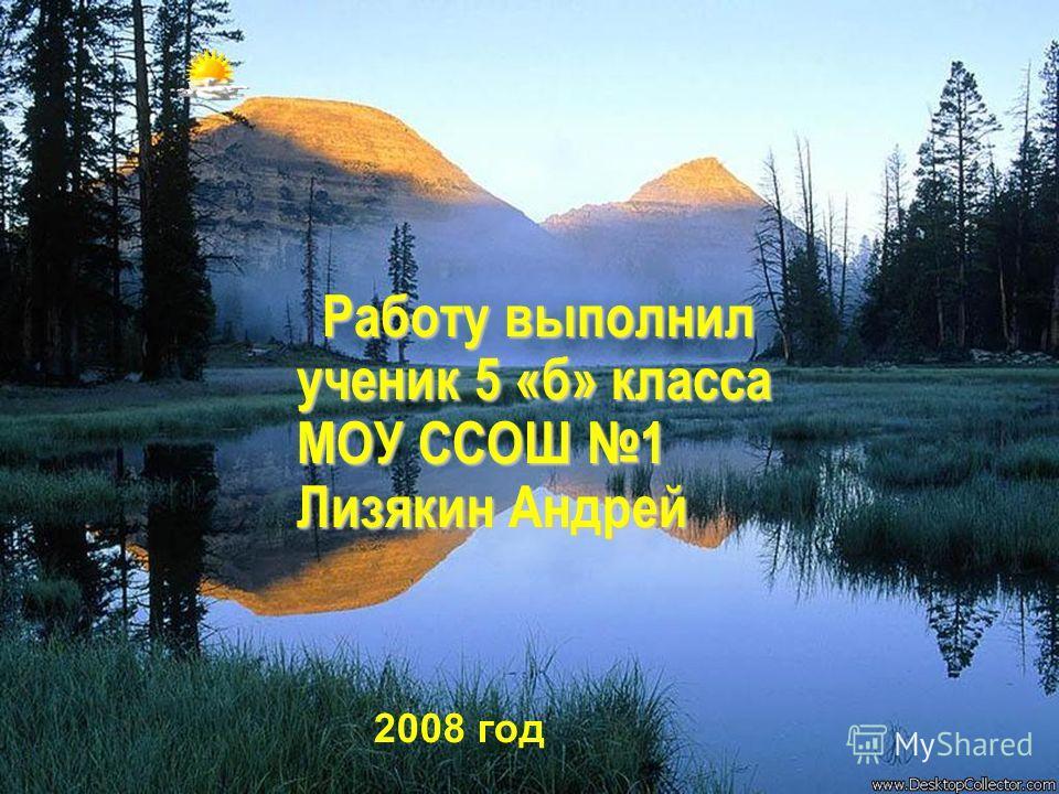 Работу выполнил ученик 5 «б» класса МОУ ССОШ 1 Лизякин Андрей 2008 год