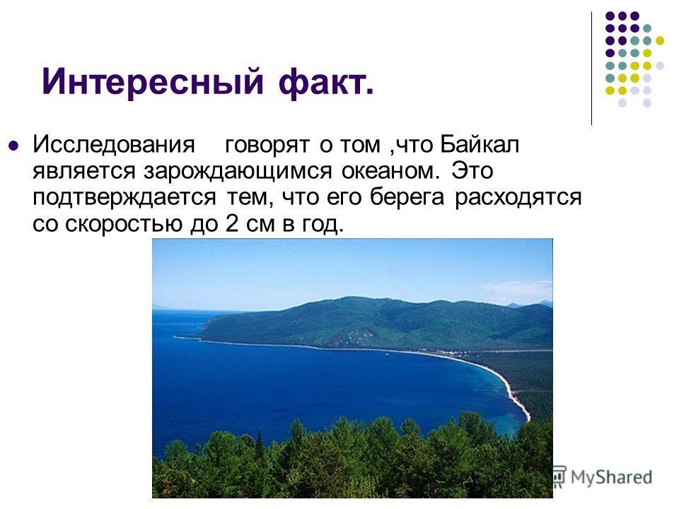 Интересный факт. Исследования говорят о том,что Байкал является зарождающимся океаном. Это подтверждается тем, что его берега расходятся со скоростью до 2 см в год.