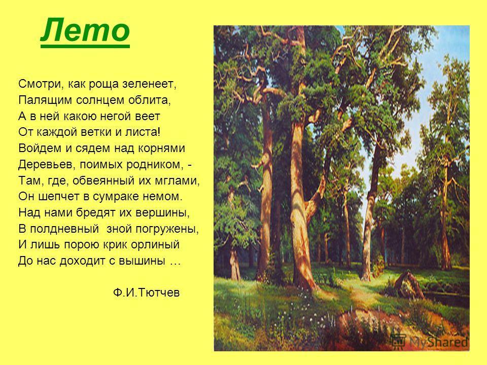 Лето Смотри, как роща зеленеет, Палящим солнцем облита, А в ней какою негой веет От каждой ветки и листа! Войдем и сядем над корнями Деревьев, поимых родником, - Там, где, обвеянный их мглами, Он шепчет в сумраке немом. Над нами бредят их вершины, В