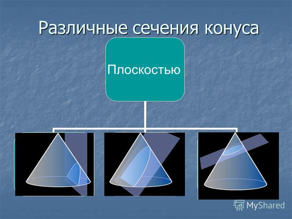 Различные сечения конуса Различные сечения конуса