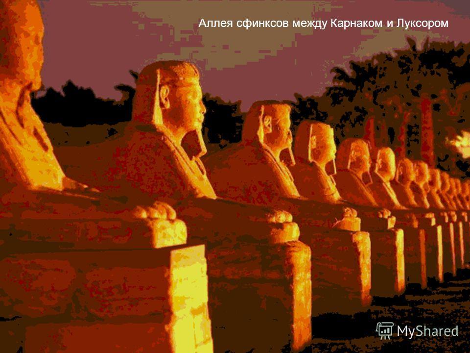 Аллея сфинксов между Карнаком и Луксором