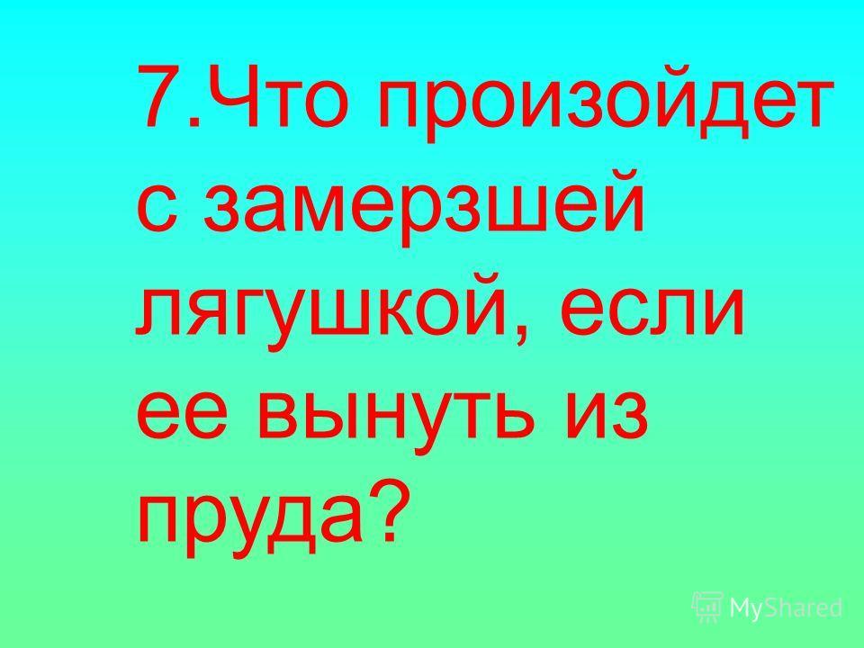 7.Что произойдет с замерзшей лягушкой, если ее вынуть из пруда?