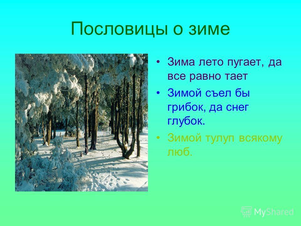 Пословицы о зиме Зима лето пугает, да все равно тает Зимой съел бы грибок, да снег глубок. Зимой тулуп всякому люб.