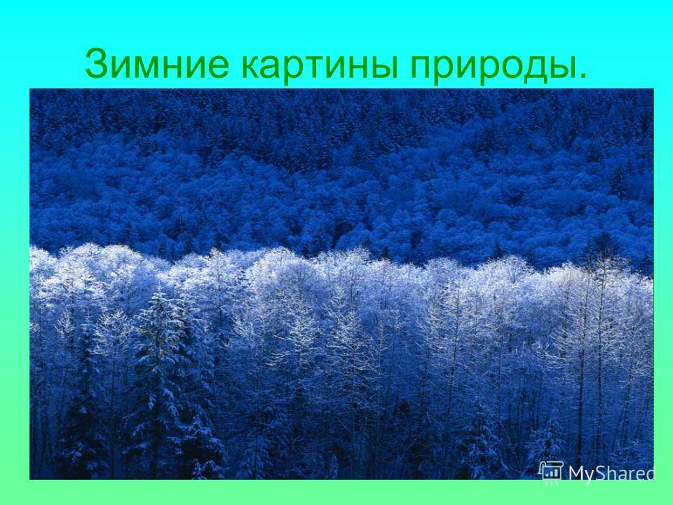 Зимние картины природы.