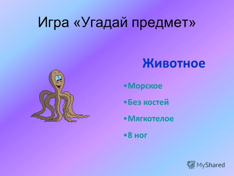 Игра «Угадай предмет» Морское Без костей Мягкотелое 8 ног Животное