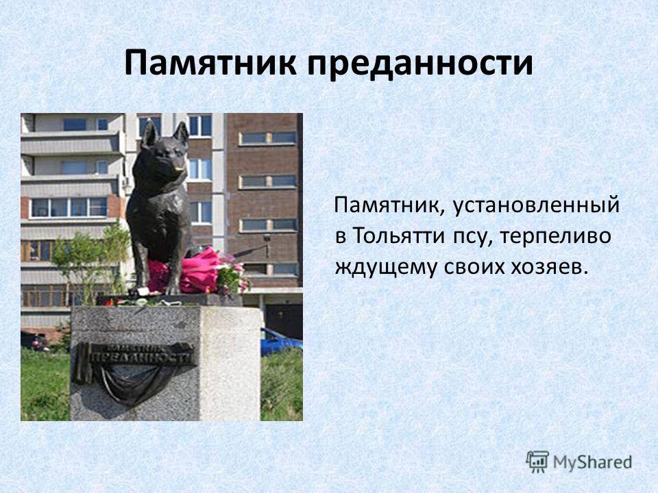 Памятник преданности Памятник, установленный в Тольятти псу, терпеливо ждущему своих хозяев.