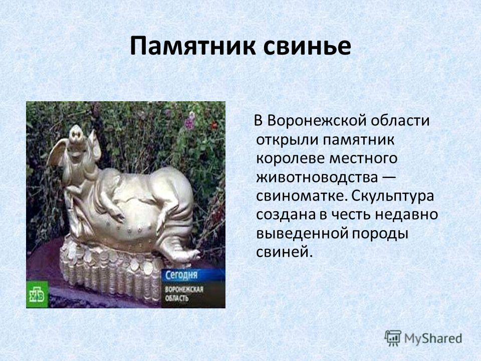 Памятник свинье В Воронежской области открыли памятник королеве местного животноводства свиноматке. Скульптура создана в честь недавно выведенной породы свиней.