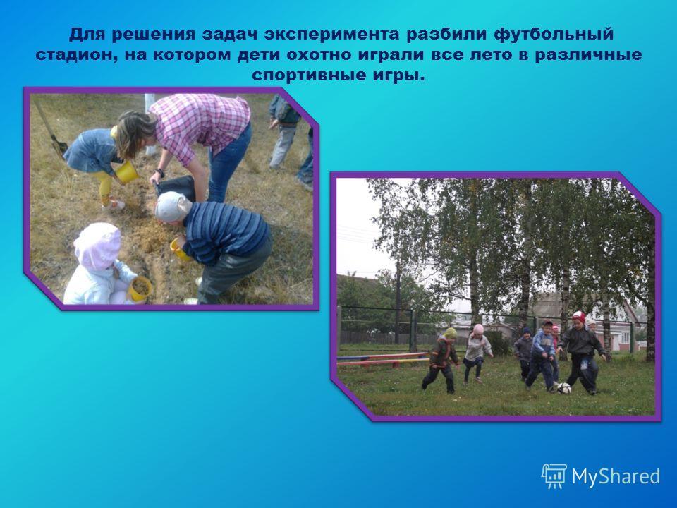 Для решения задач эксперимента разбили футбольный стадион, на котором дети охотно играли все лето в различные спортивные игры.