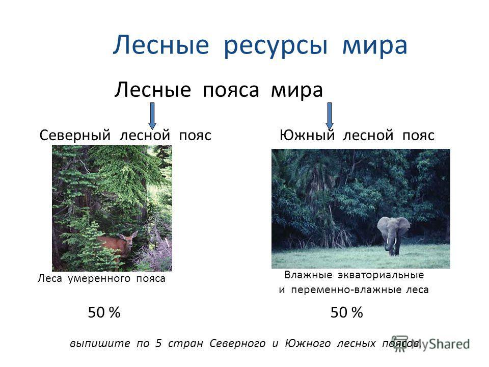 Лесные ресурсы мира Лесные пояса мира Северный лесной поясЮжный лесной пояс Леса умеренного пояса Влажные экваториальные и переменно-влажные леса выпишите по 5 стран Северного и Южного лесных поясов. 50 %