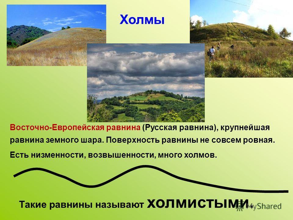 Восточно-Европейская равнина (Русская равнина), крупнейшая равнина земного шара. Поверхность равнины не совсем ровная. Есть низменности, возвышенности, много холмов. Такие равнины называют холмистыми. Холмы