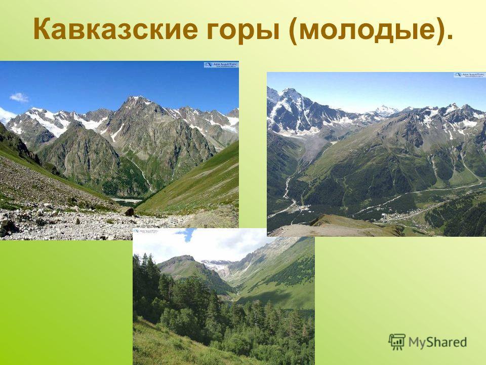 Кавказские горы (молодые).