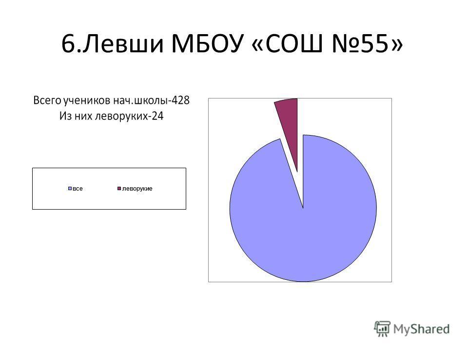 6.Левши МБОУ «СОШ 55»