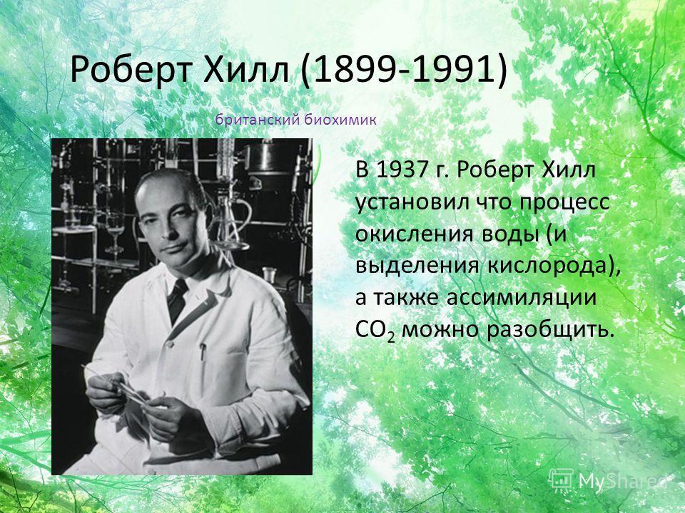 Роберт Хилл (1899-1991) В 1937 г. Роберт Хилл установил что процесс окисления воды (и выделения кислорода), а также ассимиляции CO 2 можно разобщить. британский биохимик