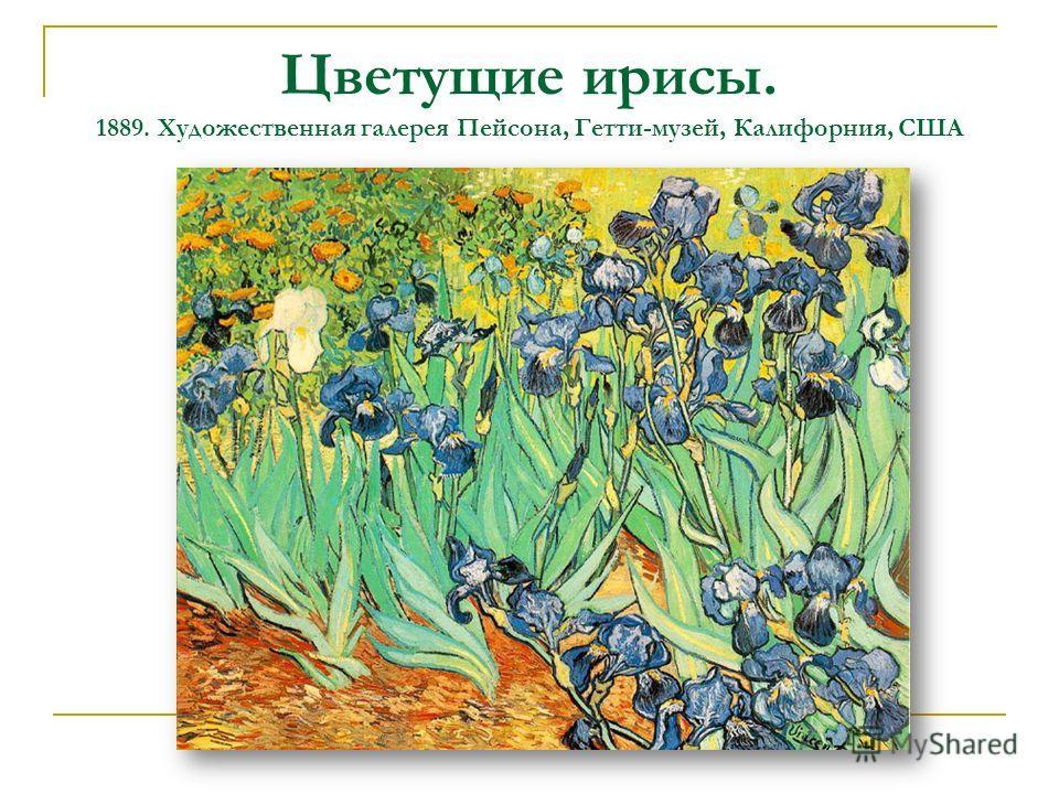 Цветущие ирисы. 1889. Художественная галерея Пейсона, Гетти-музей, Калифорния, США