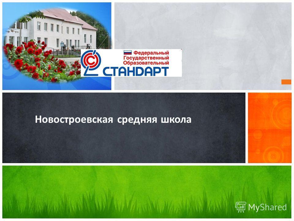 Новостроевская средняя школа